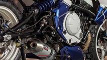 2019 Beautiful Kawasaki ER-6N Custom Version Inspired From Bugatti Supercar | Mich Motorcycle