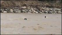 Asciende a 78 la cifra de fallecidos y 264 heridos por las fuertes inundaciones en Perú