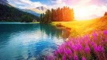 Sommeil de la Musique, de l'Apaisement, de la Musique pour le Soulagement du Stress, Musique de Relaxation, 30 Minutes de Sommeil de la Musique, 2892B