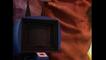 The Weird Al Show: S1 E7 - Because I Said So