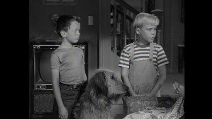 Dennis The Menace: S1 E20 - Dennis And The Dog