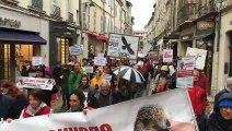 Ligue de protection des oiseaux : 200 personnes marchent actuellement à Avignon