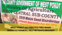 West Pokot distributes free maize seeds to farmers to help mitigate drought