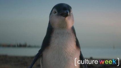 Culture Week by Culture Pub : pingouins, stop-motion et controverse