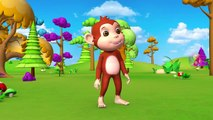 Le plaisir de Rodéo Taureau Carnaval de Jeu par l'Étable des Animaux avec des Drôles de Gorille et Panda pour les enfants | Peony Noakes