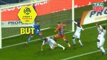 But Mihailo RISTIC (79ème) / Montpellier Hérault SC - EA Guingamp - (2-0) - (MHSC-EAG) / 2018-19