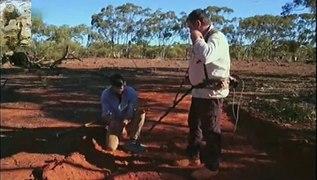 Fiebre del oro Australia 3x12