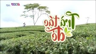 Tra Tao Do Tap 43 Ban Chuan Tap Cuoi Phim Viet Nam THVL1 Phi