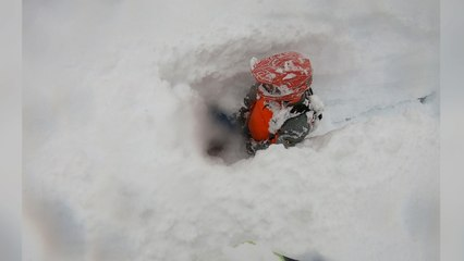 Deep Snow Swallows Snowmobile