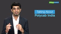 Ideas for Profit   Polycab IPO review: Strong biz with sound fundamentals; subscribe