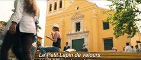 SEDUIS-MOI SI TU PEUX ! : Bande annonce du film de Jonathan Levine - Bulles de Culture