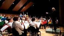 La musique classique revisitée par l'orchestre des mandolines de Remiremont