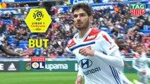 But Martin TERRIER (1ème) / Olympique Lyonnais - Dijon FCO - (1-3) - (OL-DFCO) / 2018-19