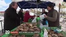 Nouveau séisme dans les Charentes, trois semaines après le premier