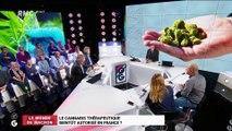 Le monde de Macron: Le cannabis thérapeutique bientôt autorisé en France ? – 08/04