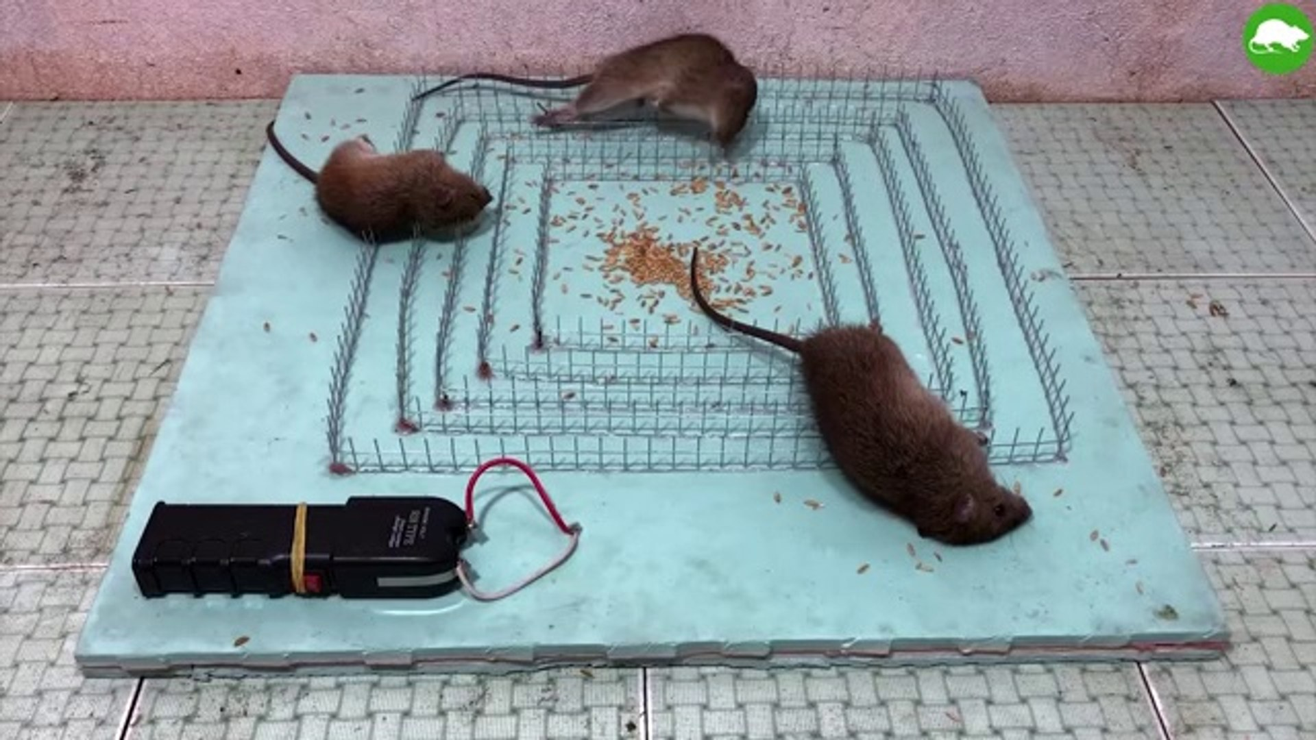 Shock Electric Mouse Trap