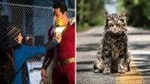 'Shazam' and 'Pet Sematary' Make Strong Debuts at North American Box Office | THR News