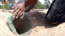 Primitive Technology: Man Make Build Deep Hole Underground Python Trap Using Deep Hole & Bamboo
