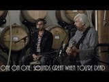 ONE ON ONE: Robyn Hitchcock - Sounds Great When You're Dead November 10th, 2014 City Winery New York