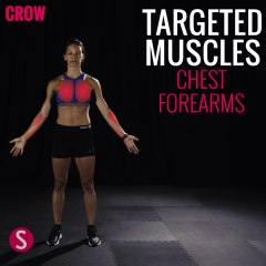 Moves and Muscles: Crow