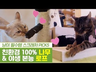 고양이 필수템, 나무 스크래처 & 로프 스크래처 [펫과사전] 12회