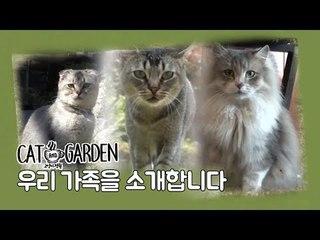 우리 가족을 소개합니다 [고양이정원] 1회
