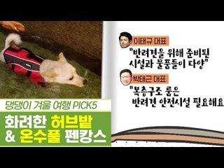 댕댕이 겨울 여행, 허브밭 & 온수풀 펜캉스 [펫과사전] 11회