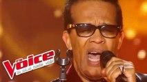 James Brown - I Got You | Vigon | The Voice France 2012 | Blind Audition