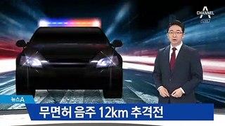 '무면허·역주행' 만취 운전자…12㎞ 추격 �