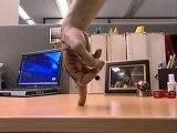 Vidéo insolite - Football - jonglage avec les doigts