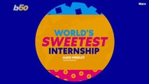 Land An Internship With Mars Wrigley And Get a Year's Worth Of Candy As a Bonus