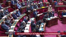 Le rendez-vous de l'information sénatoriale. - Sénat 360 (11/04/2019)