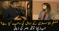 What is the reason behind downfall of Pakistani film industry?