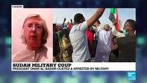 Omar al-Bashir ousted: the analysis of former EU Special Representative for Sudan