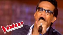Joe Cocker / Ray Charles - Unchain My Heart | Vigon | The Voice France 2012 | Prime 2