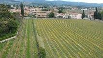 #EURoadTrip En ruta a las Europeas - Día 20: de vinos por el Véneto