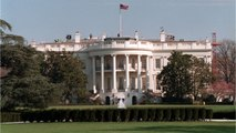 Man Arrested For Attempting To Light Himself On Fire On The Lawn Of The White House
