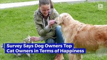 Survey Says Dog Owners Top Cat Owners in Terms of Happiness