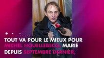 Michel Houellebecq décoré de la Légion d'honneur par Emmanuel Macron