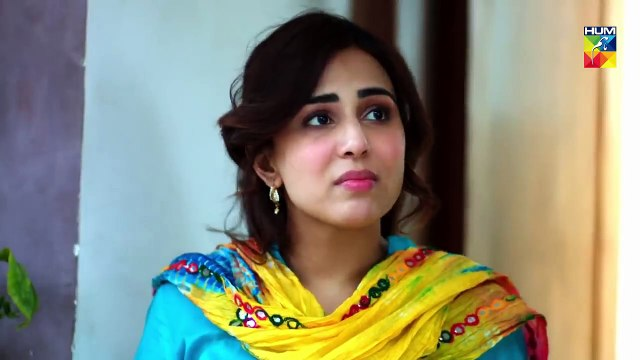 Mujhay Tum Pasand Ho Episode 2 - Choti Choti Batain HUM TV Drama - 14th April 2019