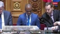 Office français de la biodiversité : le sénat renforce les pouvoirs des chasseurs - Les matins du Sénat (15/04/2019)