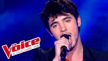 Radiohead - Creep | Louis Delort | The Voice France 2012 | Prime 4