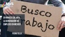 En marzo cae 46% la generación de empleos en México: Pedro Tello