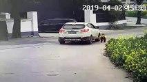 Chine : Une poussette renversée par une voiture