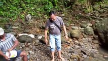 Des dizaines d'anguilles en bord de rivière... Pêche facile