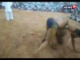 मेले में हुआ कुश्ती दंगल का आयोजन, पहलवानों ने दिखाए दांवपेंच- Organizing wrestling at the fair in sawai madhopur