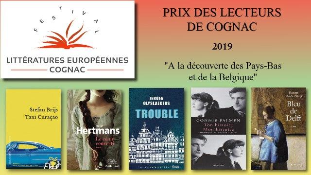 A la découverte des Pays-Bas et de la Belgique par Céline L'Hostis