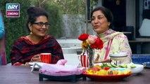 Tum Meri Ho Last Episode - on ARY Zindagi in High Quality 16th April 2019