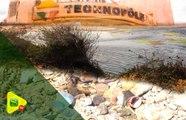 Technopole, une décharge d'ordures à ciel ouvert : des citoyens sonnent l'alarme