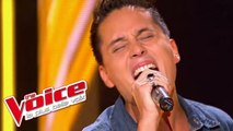 Ray Charles – Hallelujah I Love Her So | Jo Soul | The Voice France 2013 | Blind Audition
